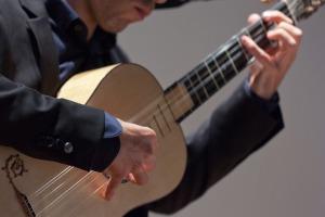 Fernando guitarrista